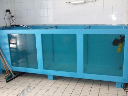 Vetroresina abatese lavori in vetroresina for Vasche in vetroresina