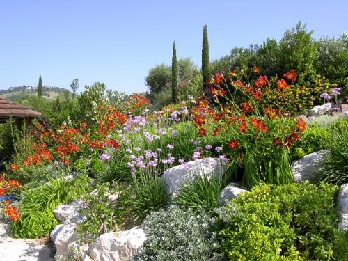 Giardinigiordani studio di architettura del paesaggio for Architettura giardini