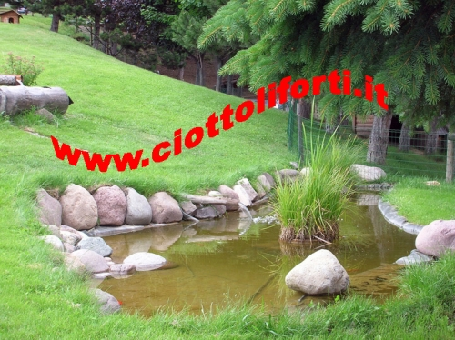 Ciottoli e pietre pietra naturale da giardino ciottoli for Pietre di fiume